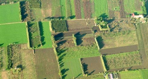 diffidenza_agricoltura